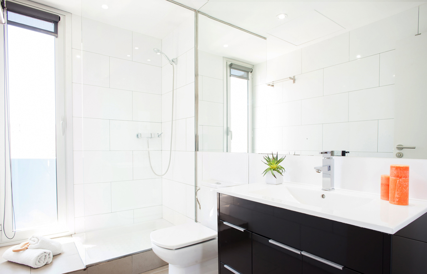 Mould Solutions - bathroom