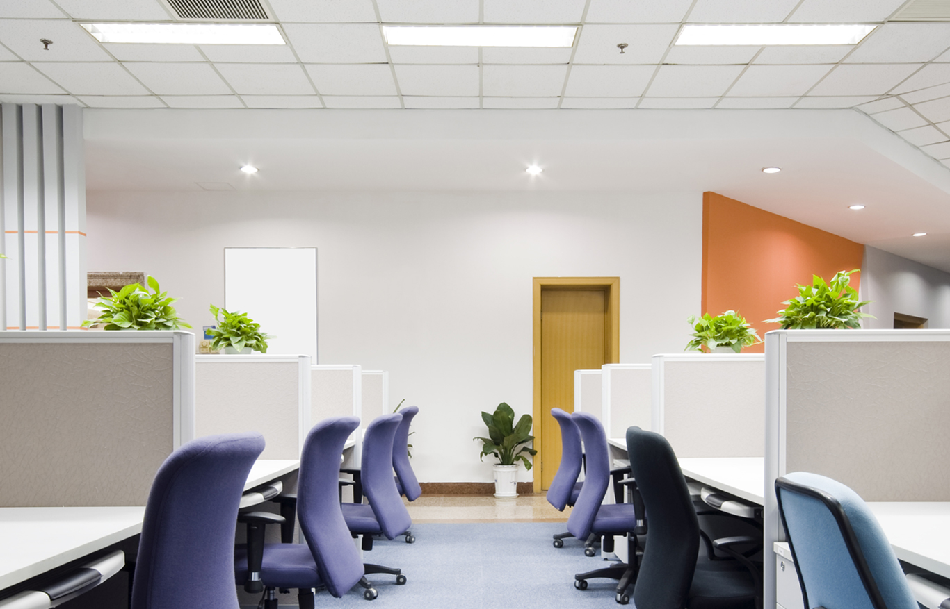 Mould Solutions - Office